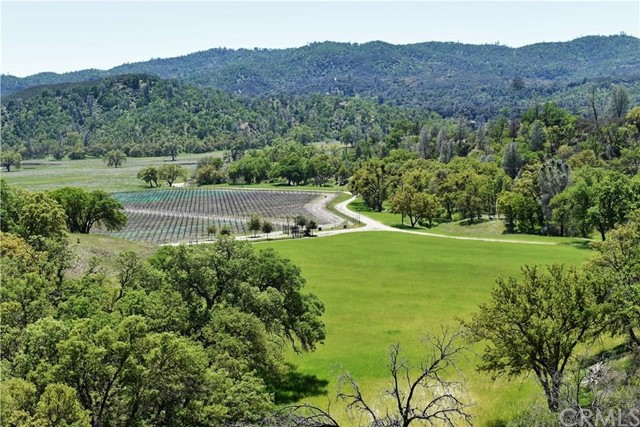 68591 Vineyard Canyon, Parkfield, CA 93451