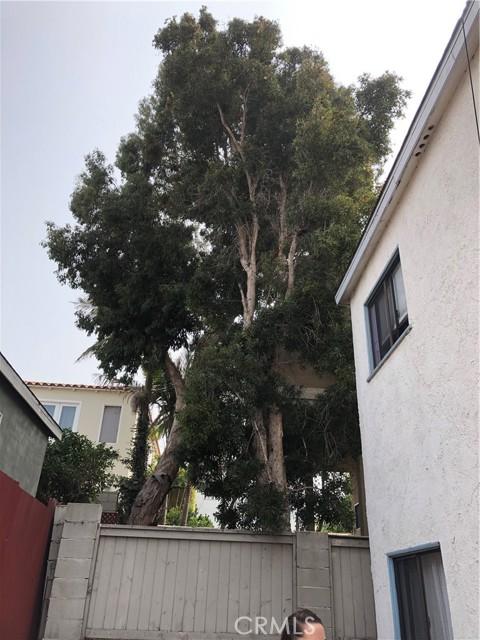 1122 prospect, Hermosa Beach, California 93003, 1 Bedroom Bedrooms, ,1 BathroomBathrooms,For Rent,prospect,PV21070267