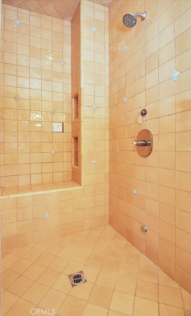 Main bath separate shower