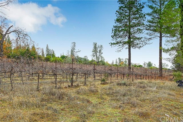 13988 Noble Ranch Rd, Lower Lake, CA 95457 Photo 4