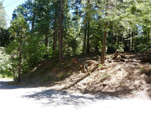 865 Maple Road, Lake Arrowhead, CA 92385