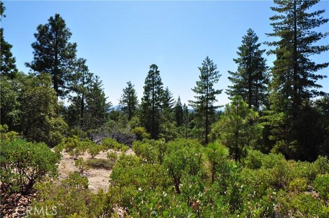 0 Isham, Berry Creek, CA 95916