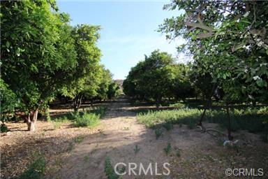 Image 15 For 16735 Mockingbird Canyon Road