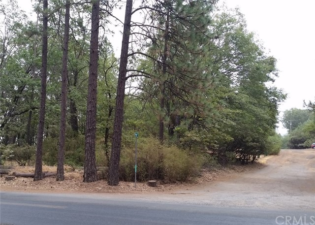 11675 Loch Lomond Road, Cobb, CA 95461