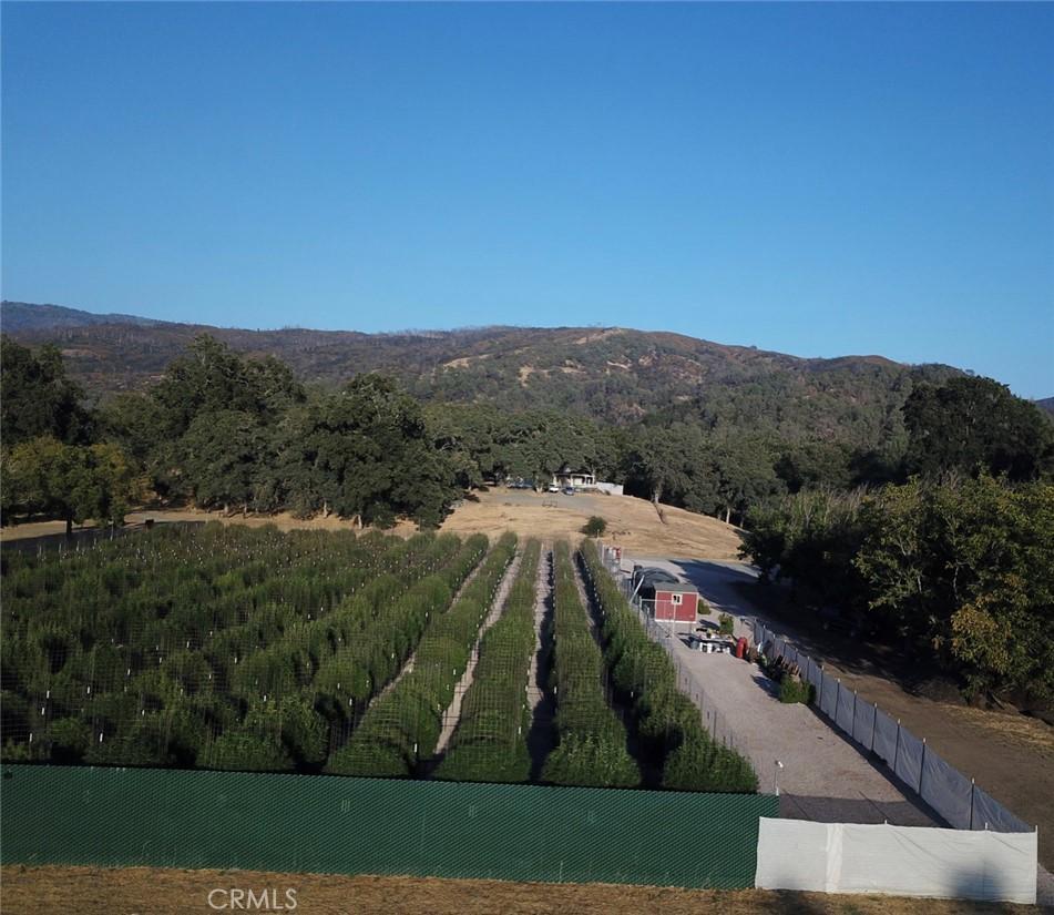 Photo of 2001 Ladder Ridge Road, Upper Lake, CA 95485