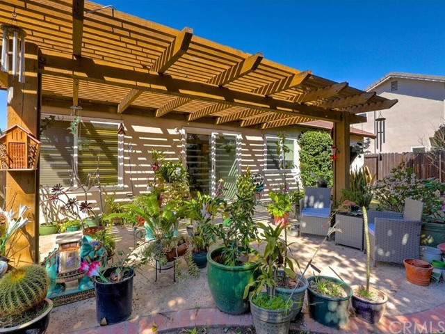Extra large backyard includes covered patio, plenty of grass, and planters with fully grown trees.