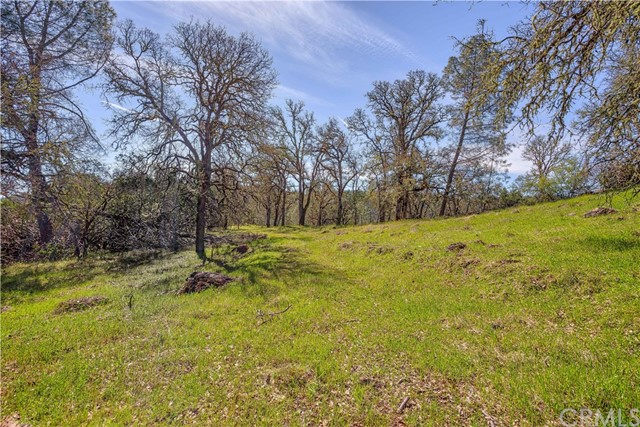 18185 Little High Valley Rd, Lower Lake, CA 95457 Photo 12