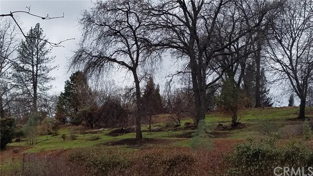 438 Plantation Drive, Paradise, CA 95969