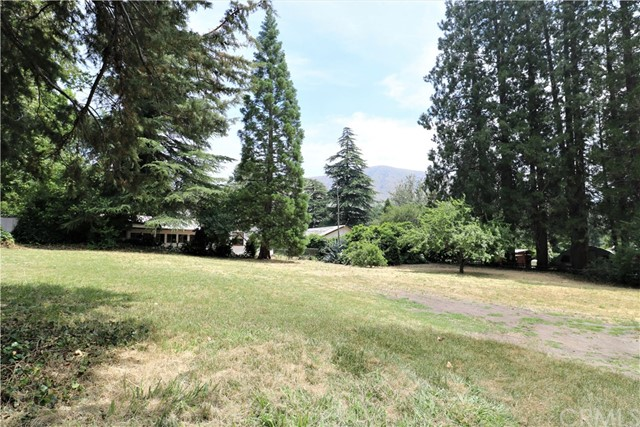 13842 Meadow Ln, Lytle Creek, CA 92358 Photo 2
