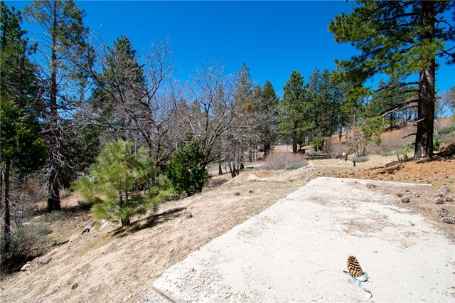 32274 N Green Valley Lake Rd, Green Valley Lake, CA 92382 Photo 30
