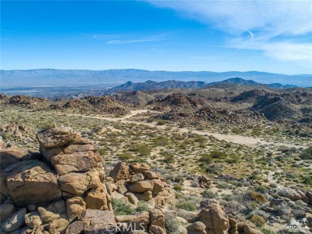 Desert Calico, Mountain Center, CA 92561