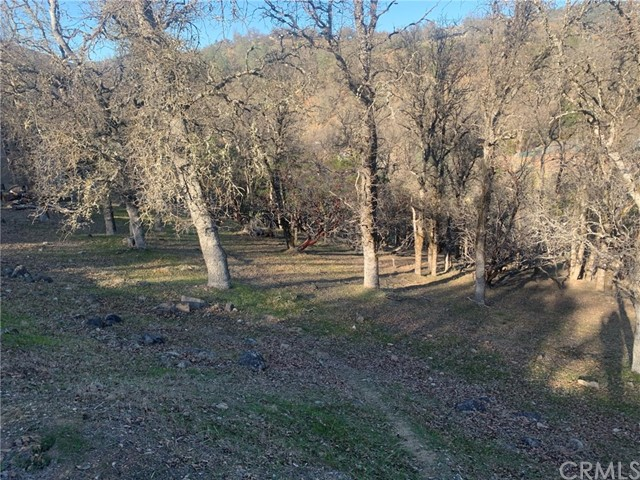 19450 Donkey Hill Rd, Hidden Valley Lake, CA 95467 Photo 2