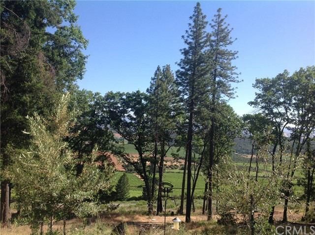 9570 Seigler Springs North Road, Kelseyville, CA 95451