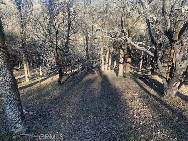 19450 Donkey Hill Rd, Hidden Valley Lake, CA 95467 Photo 3