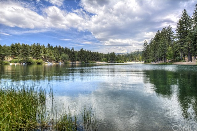 540 Beechnut Dr, Green Valley Lake, CA 92341 Photo 20