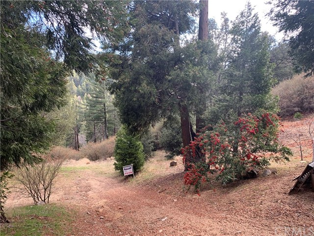 706 Deer Run Road, Cedarpines Park, CA 92322