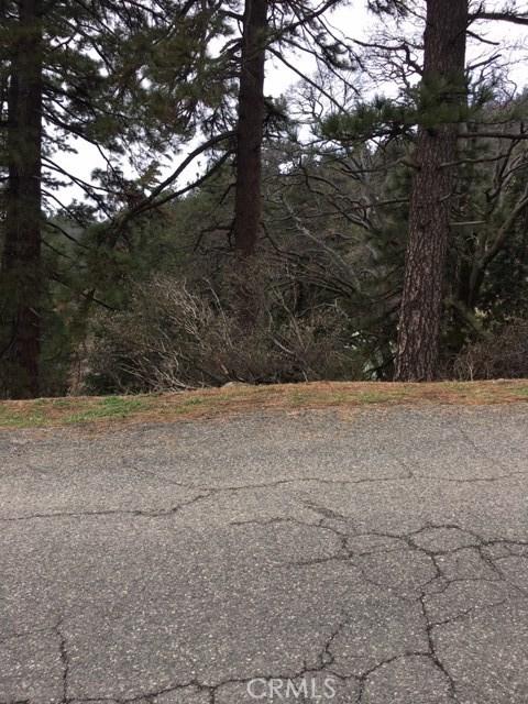 0 Sawpit Canyon Road, Cedarpines Park, CA 92322