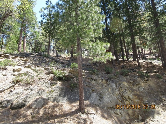 7325 Yosemite Park Way, Yosemite, CA 95389
