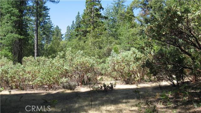 0 Cedar Circle, Berry Creek, CA 95916