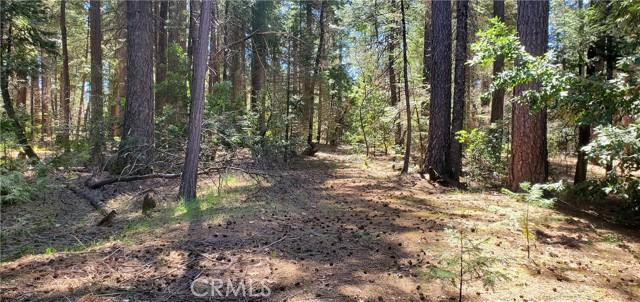 0 Shadow Wood, Magalia, CA 95954