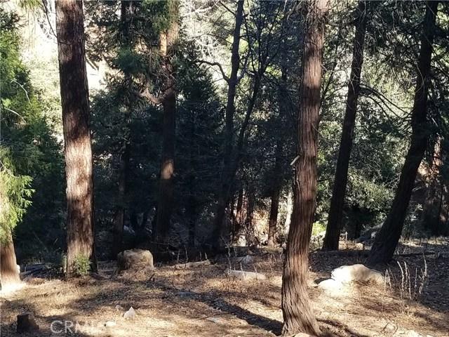 0 Deer Run Road, Cedarpines Park, CA 92322