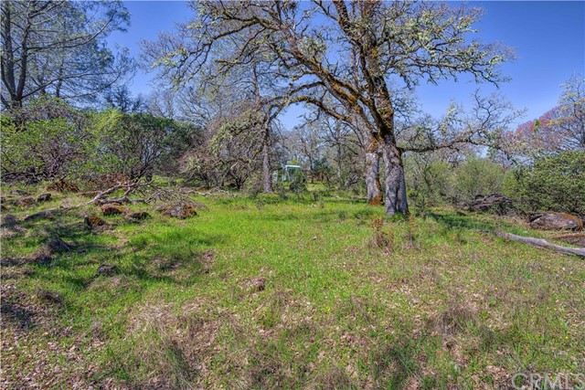 18185 Little High Valley Rd, Lower Lake, CA 95457 Photo 19