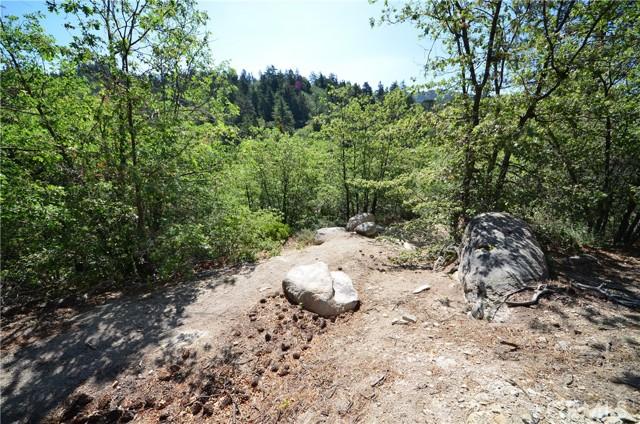 1 Deer Lick Dr., Arrowbear, CA 92382 Photo 3