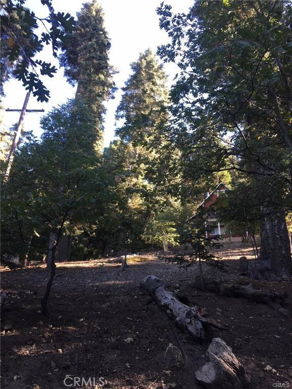 0 Lo Lane, Twin Peaks, CA 92391