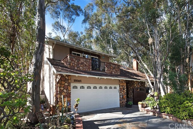 25001 Rivendell Drive, Lake Forest, CA 92630