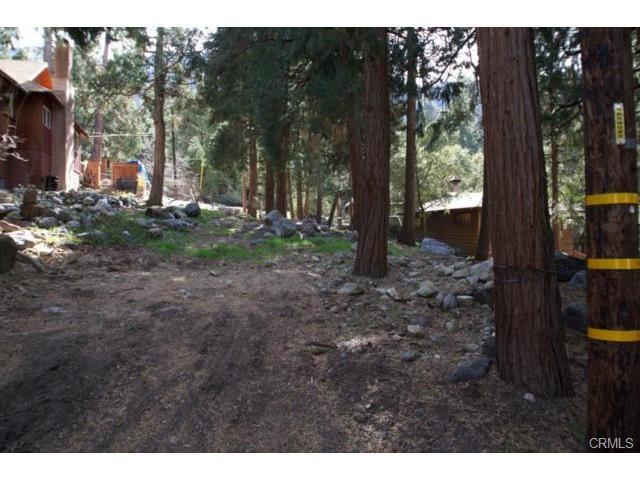 41144 Oak Drive, Forest Falls, CA 92339