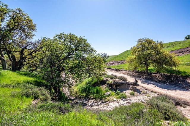 0 Hidden Creek, San Miguel, CA 93451 Photo 19