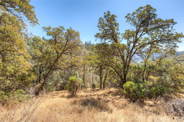 0 Canyon Creek Road, Oroville, CA 95916