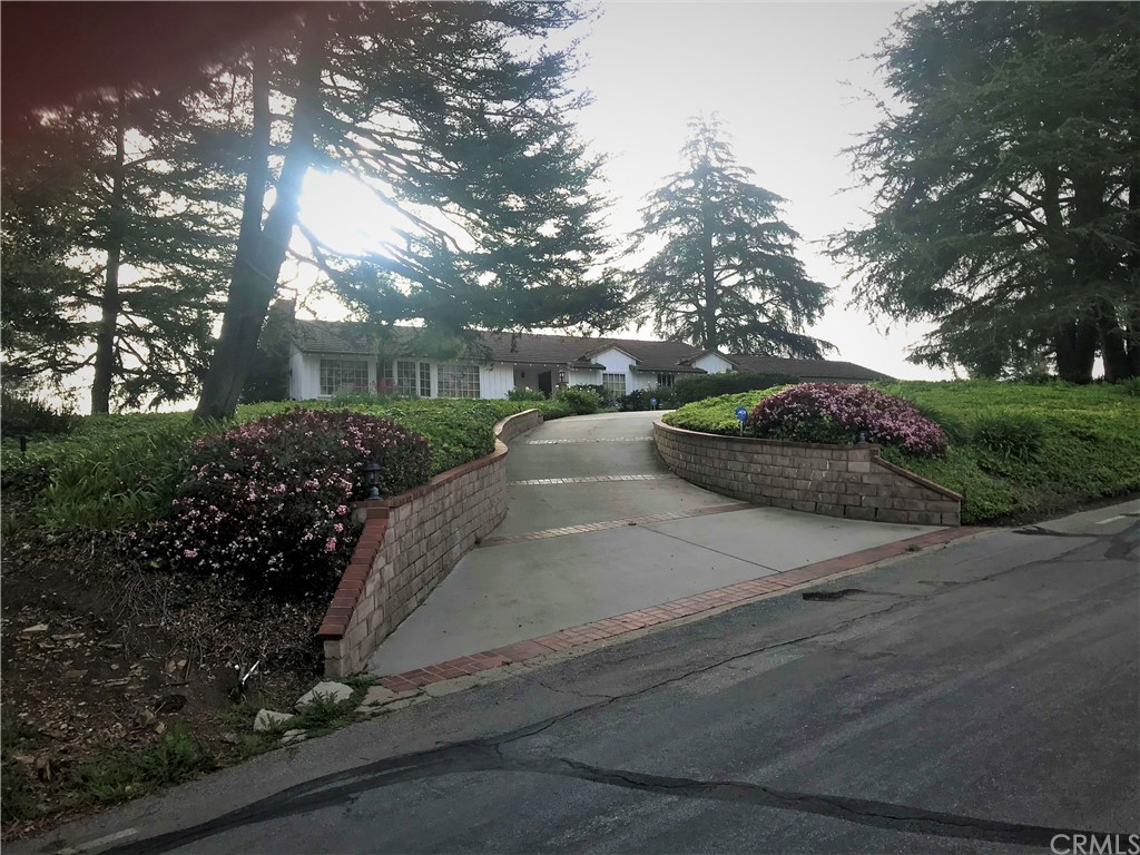 Circular driveway view