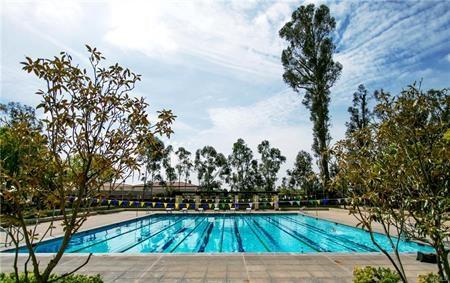 23 Breezes, Irvine, CA 92620 Photo 17