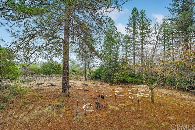 13988 Noble Ranch Rd, Lower Lake, CA 95457 Photo 7