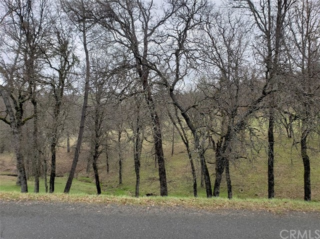 19534 Donkey Hill, Hidden Valley Lake, CA 95467