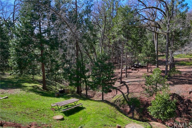 52946 Timberview Rd, North Fork, CA 93643 Photo 53