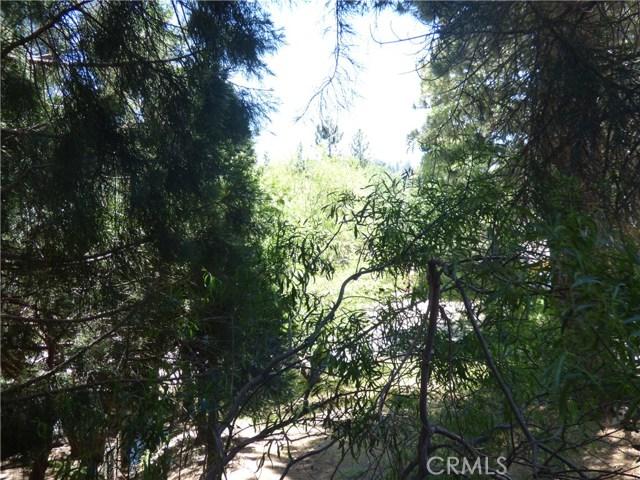 33449 Wild Cherry Dr, Green Valley Lake, CA 92341 Photo 18