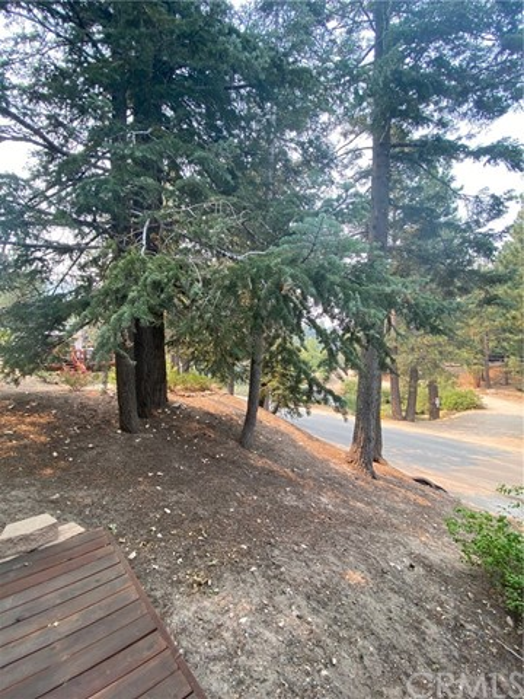33201 Lakeside, Green Valley Lake, CA 92341 Photo 16