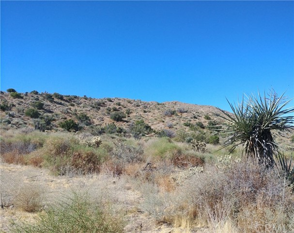 0 Cedar, Morongo Valley, CA 92256