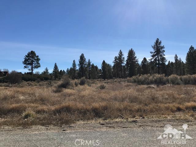45 Devils Ladder Road, Mountain Center, CA 92561