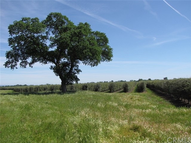 0 Hall Road, Tehama, CA 96090