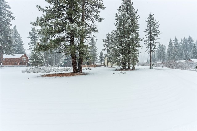 10800 Cherokee Drive, Big Bear, CA 92333