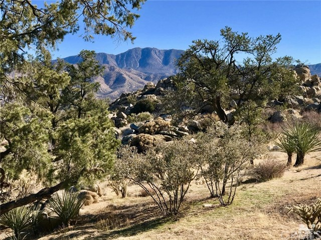 60150 Santa Rosa Road, Mountain Center, CA 92561