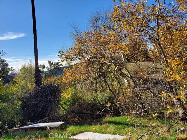 Image 17 of 17715 W Kenwood Ave, San Bernardino, CA 92407