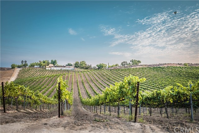33515 Rancho California Rd, Temecula, CA 92591 Photo 12