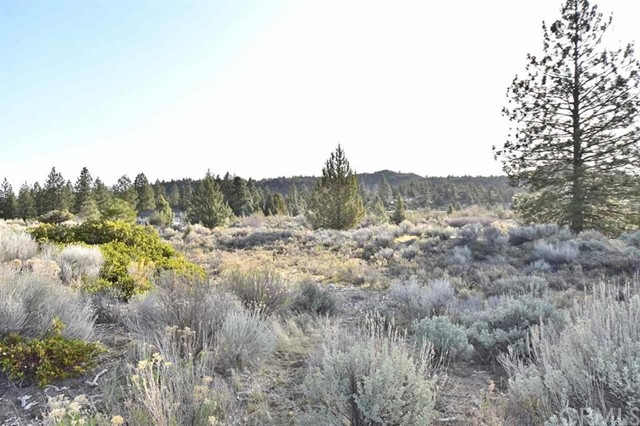 0 Lot 184 Sanders Road, Weed, CA 96094