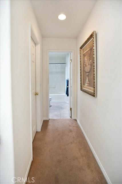 Hallway, walk in closet