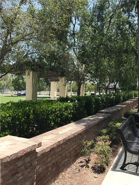 96 Great Lawn, Irvine, CA 92620 Photo 30