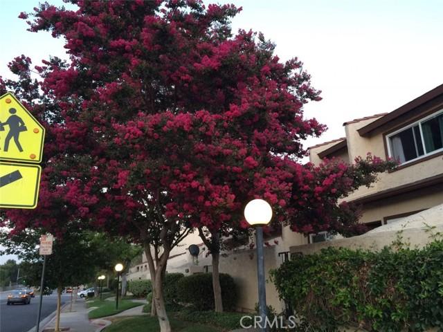 9. 8378 Rush Street Rosemead, CA 91770